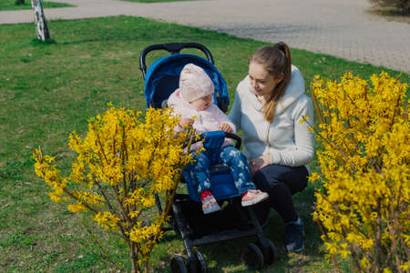 Young beautiful stylish mother with a child in a pram near a yellow bush in summer.