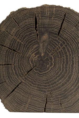 A handmade oak souvenir, an oak texture with cracks.