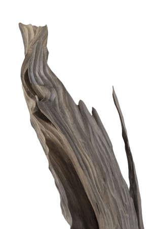 Carved sculpture of bog oak on a white background.