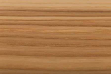 Wooden panel of natural wood, wood texture. 写真素材
