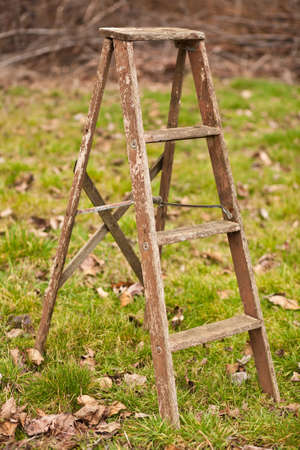 An old, weathered, wood ladder in a field of grass.