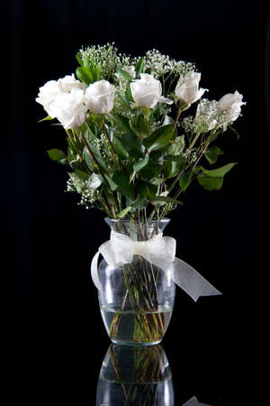 with white: White roses in a clear, glass vase set against a white background  Stock Photo