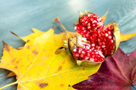 varnished: Pomegranate with leaves on grey varnished parquet