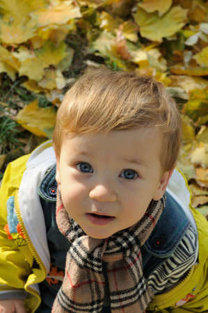 Portrait of a boy with a scarf around his neck who played in yellow leaves