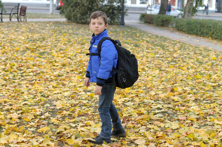 Boy goes to school with a large knapsack across the lawn with autumn yellow leaves. He is dressed in a blue jacket and jeans. Stock Photo - 91267864