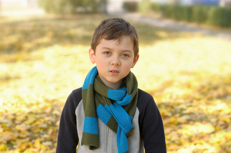 Portrait of a school-aged boy standing on a background of yellow autumn foliage. A long scarf is tied around the boy's neck Stock Photo - 91259269
