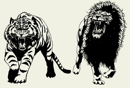 Hand drawn Tiger and Lion hunting togther. Vector