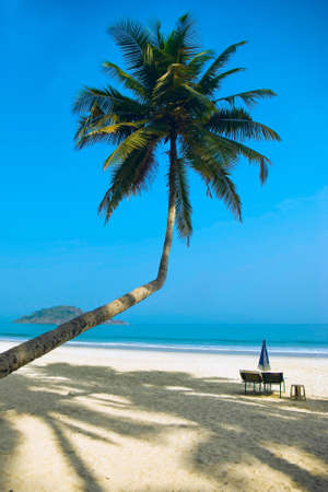 Tropical beach of Palolem, Goa, India photo