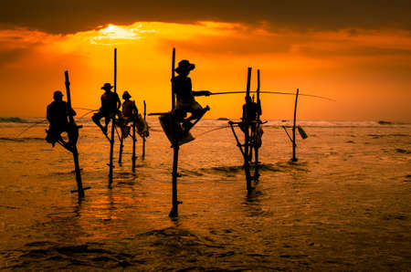 Silhouettes of the traditional fishermen at the sunset in Sri Lanka Stok Fotoğraf - 55151180