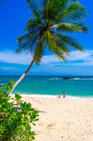 Beautiful view at the tropical beach in Sri Lanka