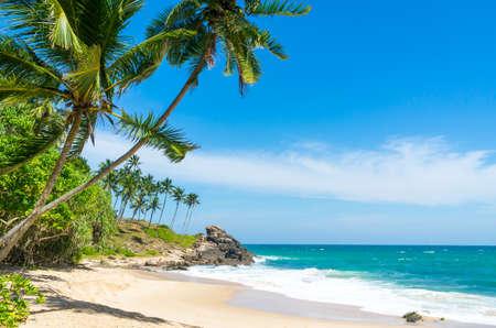 스리랑카의 열대 해변 스톡 콘텐츠