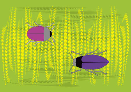 two different color bugs in wheat, vector illustration Vector