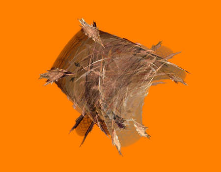 membranes: fractal illustration of feathers and membranes on orange background Stock Photo