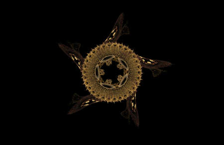 abstract fractal golden symmetric figure on black