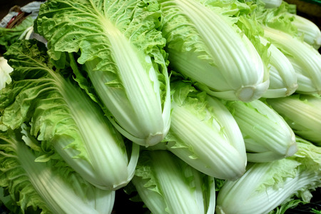 south east asian: Chinese white lettuce are piled on the wooden big basket thatâ??s have been found popular in the south east asian market. Stock Photo