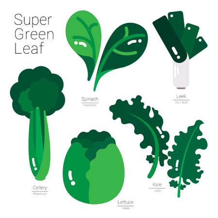Green vegetables illustrated in simple shapes with nutritions information.