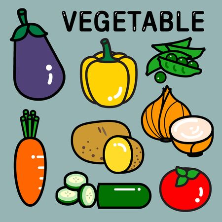 Colour vegetables are popular ingredients to cook stew or other recipes. They are so fresh and colourful. Illustration
