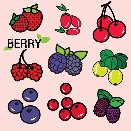 preserved: Various kinds of colourful fresh berry, berries in general are considered a good source of nutrient and provide health benefits. Strawberry, blueberry, raspberry, etc. Illustration