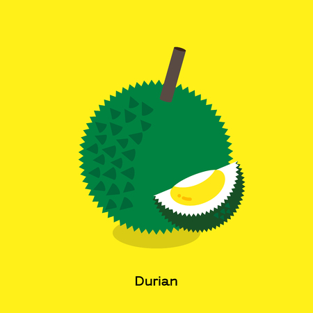 The illustration of yellow durian with green shell and thorn show pulp and seed on yellow background. Illustration
