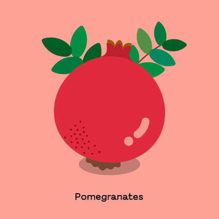 The illustration of pink pomegranates on light pink background with word.  イラスト・ベクター素材