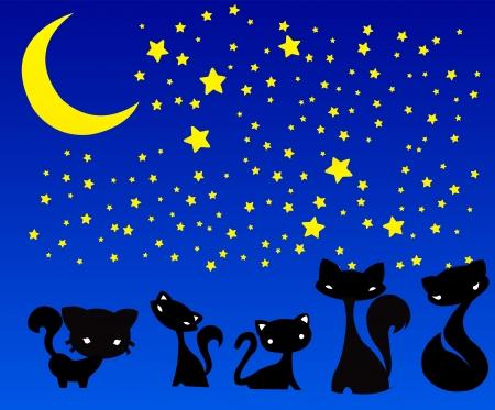 Cat silhouette Illustration