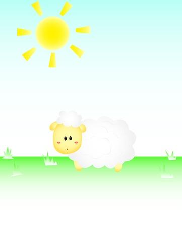 sheep barn: Sheep In the sun