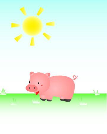 Pig In The Sun Illustration