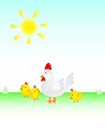 Chicken Family Stock Vector - 17088235