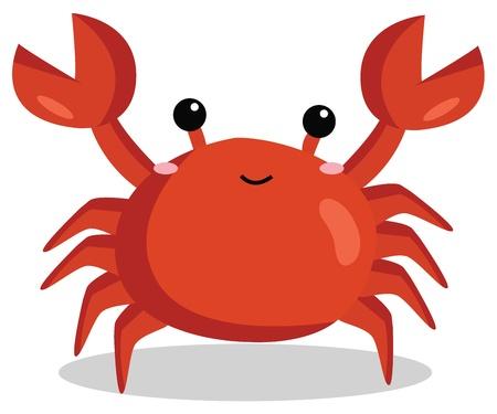 cancer crab: Crab