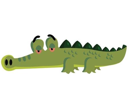 crocodile: Cocodrilo Vectores