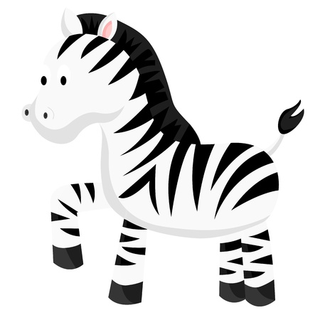 Zebra Stock Vector - 19423198