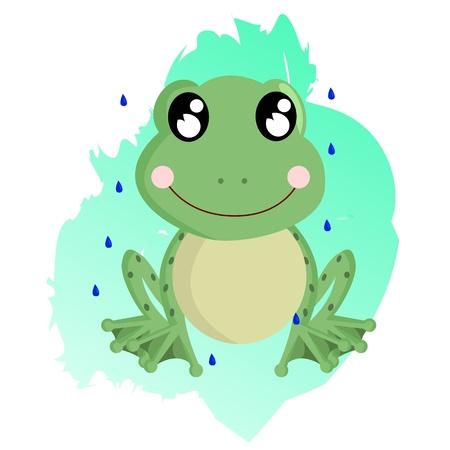 amphibious: Frog Illustration