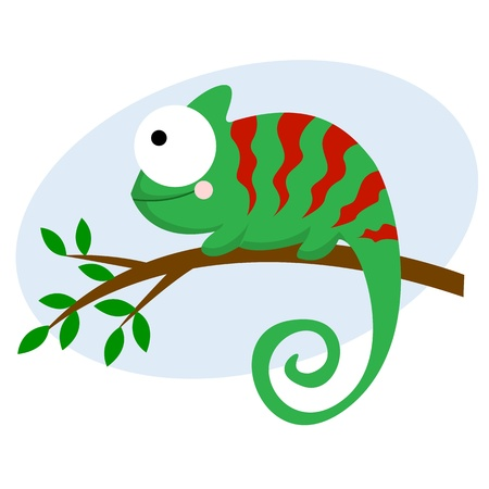 lizard: Chameleon Illustration