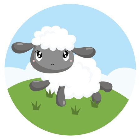 baby lamb: Little Sheep Illustration