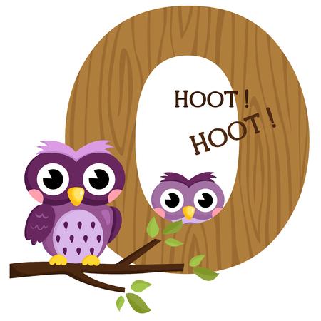 Alphabet O for Owl