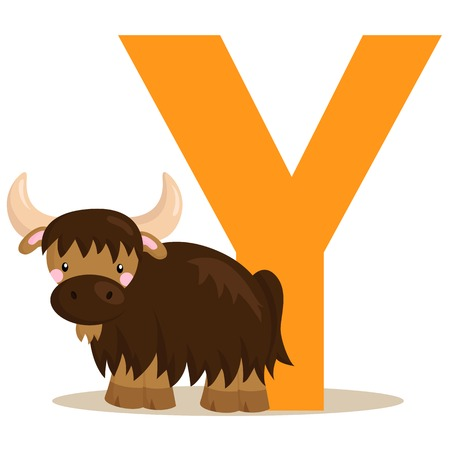 Alphabet Y for Yak Vector