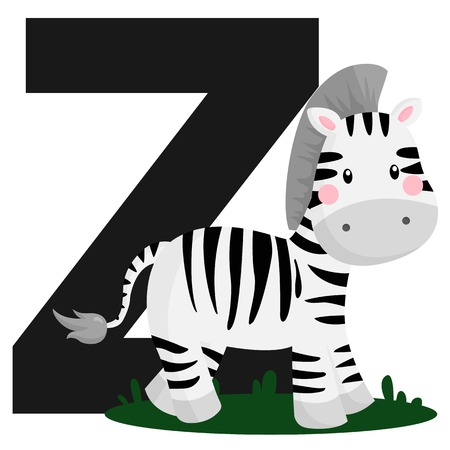 Alphabet Z for Zebra Vector