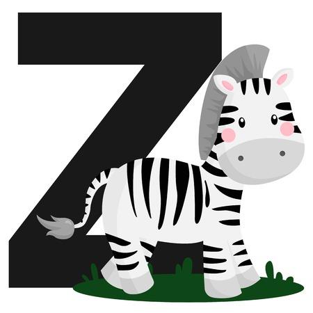 Alphabet Z for Zebra Vector