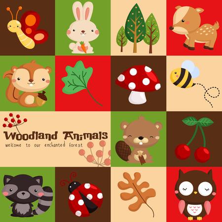 castor: Plaza de la tarjeta de Woodland
