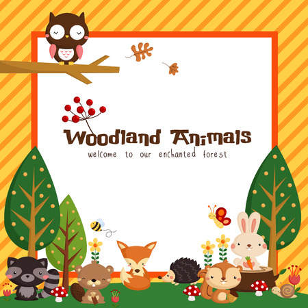 jungle animal: Tarjeta de Woodland