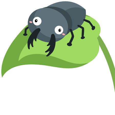 Cute Beetle Illustration