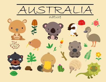 wombat: Australia Naturaleza