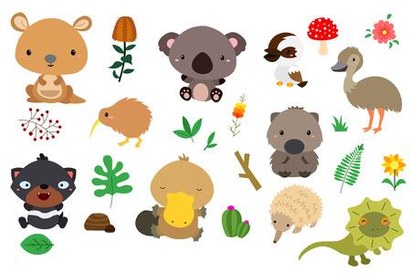 australia animal: Australia Nature