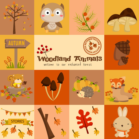 Square Woodland Autumn Animal Vector Set Çizim
