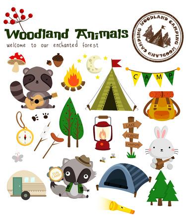cartoon  birds: Los animales del bosque que acampa Vector Set