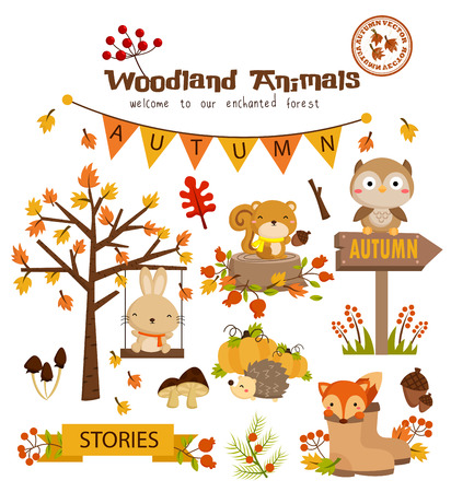 red squirrel: Woodland Autumn Animal Vector Set Illustration