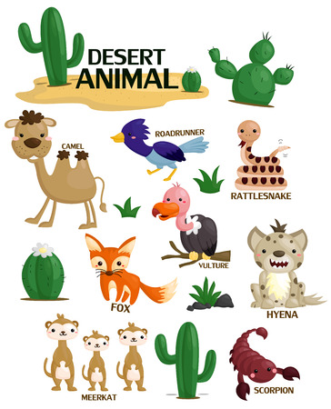 animales desierto: Desierto Vector Animal Set