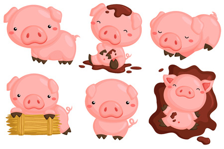 cute pig: Cute Pigs Vector Set Illustration