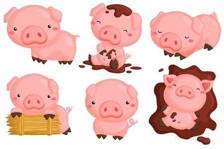Cute Pigs Vector Set Illustration