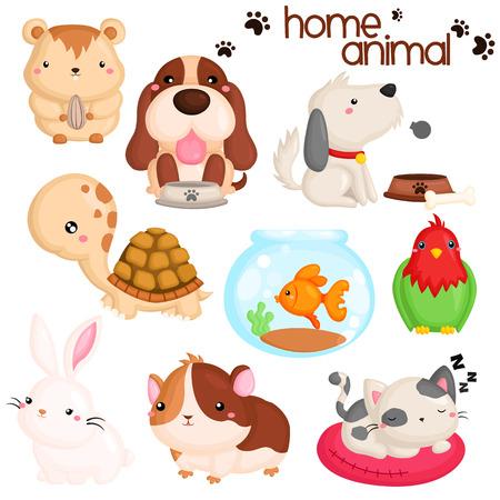 Home Pet Vector Set